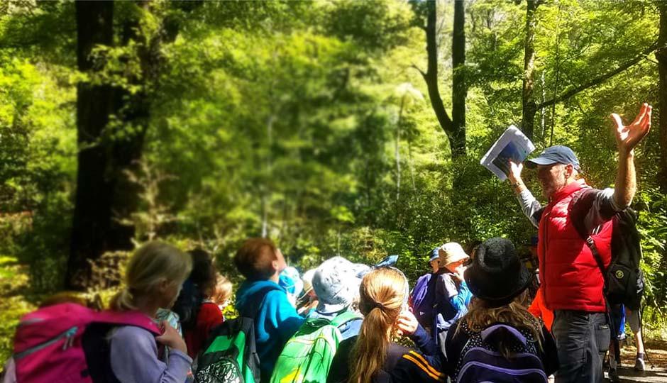 Brook Waimārama Sanctuary; Children: Students; Education Inspiring The Next Generation; Learning; Rick Field