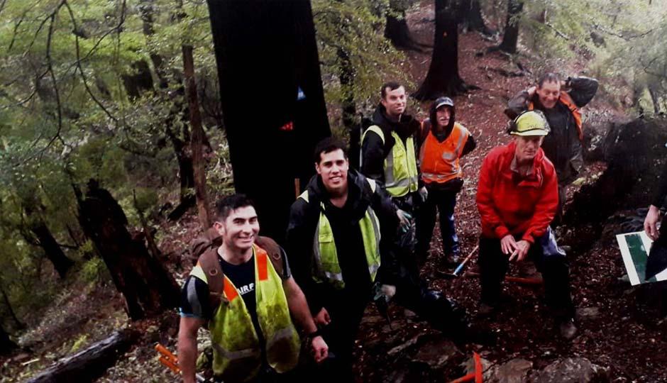 Sanctuary volunteers; get involved with the Brook Waimarama Sanctuary