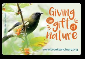 Brook Sanctuary supporter card