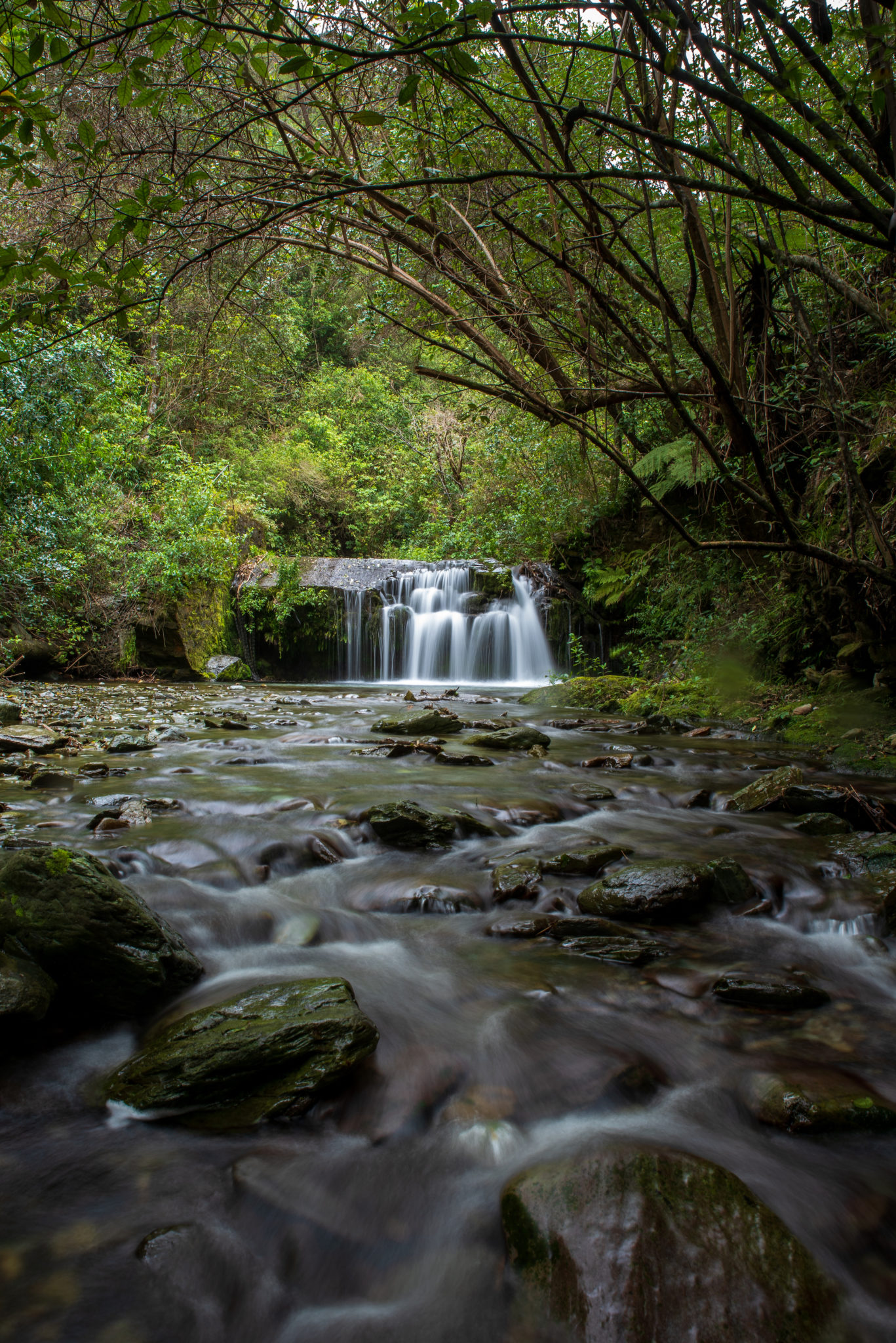 Brook Stream; Nature photography course